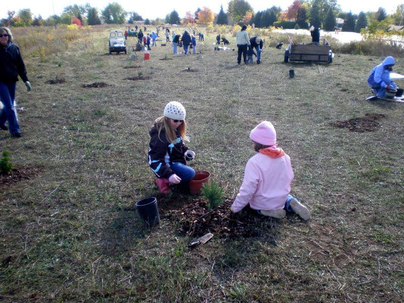 Treeplanting6